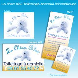 Communication visuelle le chien bleu